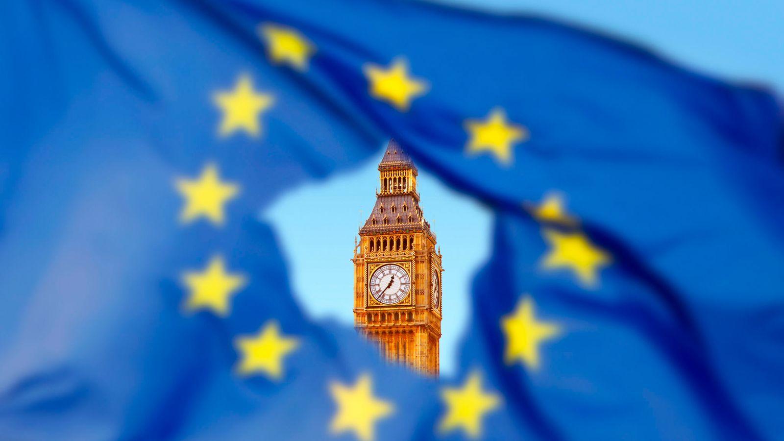 Brexit Schmexit Eu Flag Westminster